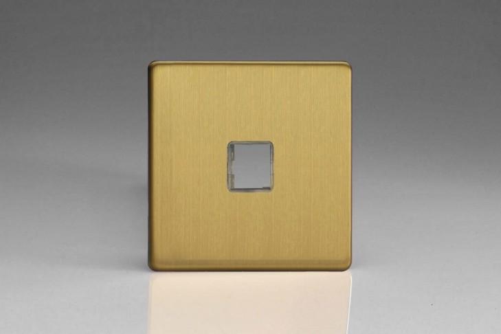 Plaque Data 1 Port pour Prise RJ12, RJ45 ou USB Design Laiton Brosse