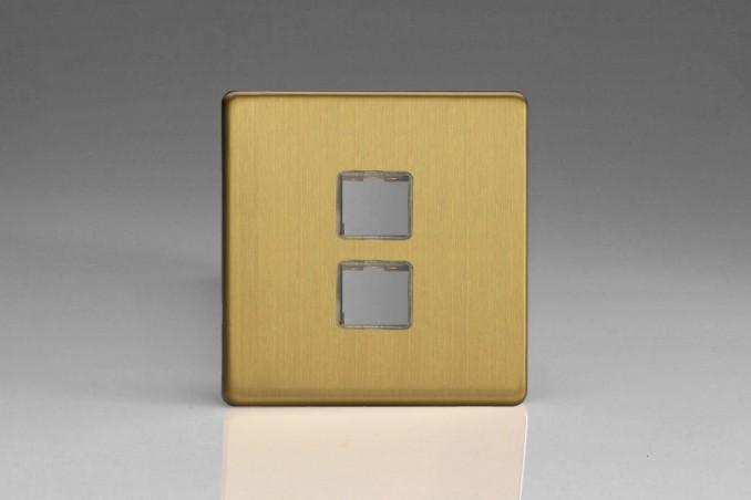 Plaque Data 2 Ports pour Prise RJ12, RJ45 ou USB Design Laiton Brosse