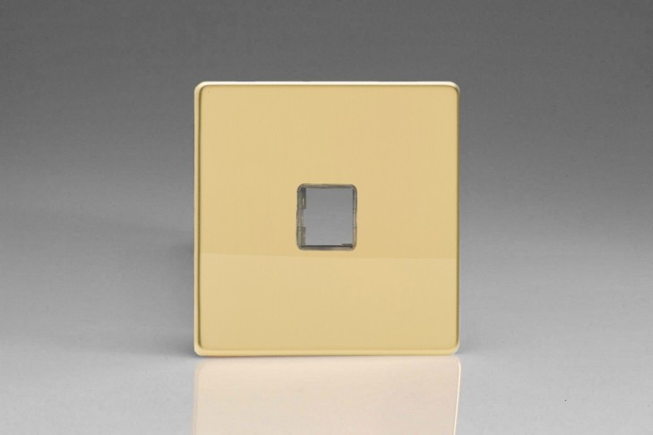 Plaque Data 1 Port pour Prise RJ12, RJ45 ou USB Design Laiton Miroir